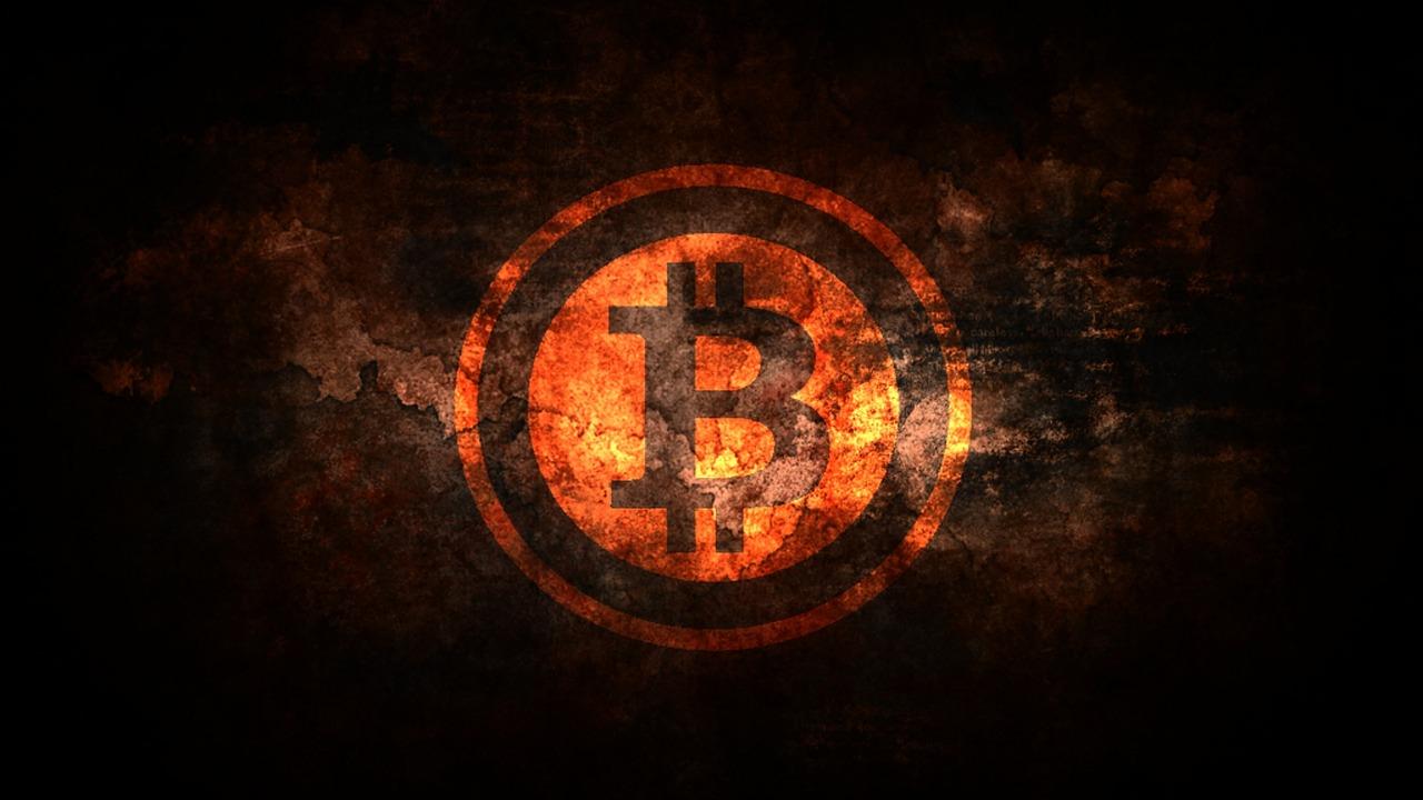 sollten sie in bitcoin-bargeld investieren wie man in kryptowährungsführer investiert